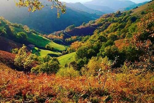 paysage-2-hordago-lizarrieta