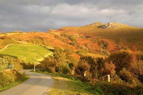 paysage-hordago-lizarrieta